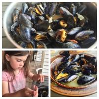 Moules marinières - Muscheln in Weisswein  - schnell, eiweißreich und lecker